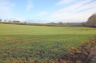 Well drained arable field 11/1/15