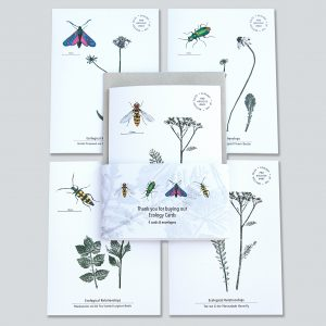 Ecology Cards