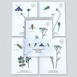Ecology Cards – Raising Funds for Research